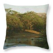 Namibian Waterway Throw Pillow