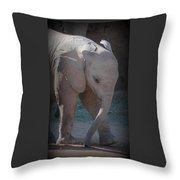 Nandi Throw Pillow