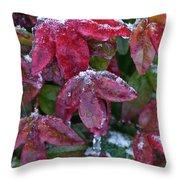 Nandina Winter Ice Throw Pillow