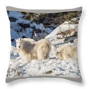 Nanny And Her Kid Throw Pillow