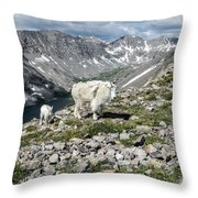 Nanny And Kid Goat #2 Throw Pillow