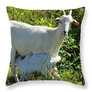 Nanny And Kid Goat Throw Pillow