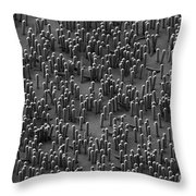 Nanowire Lithium-ion Batteries, Sem Throw Pillow