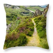 Nant Ffrancon Footpath Throw Pillow