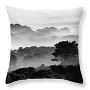 Nantucket Middle Moors In Fog Throw Pillow