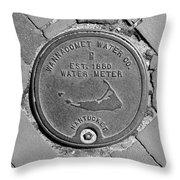 Nantucket Water Meter Cover Throw Pillow