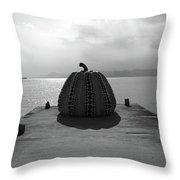 Naoshima Throw Pillow