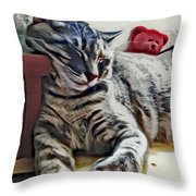 Nap Number Ten Throw Pillow by David G Paul