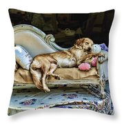 Nap Time Throw Pillow by Edward Sobuta