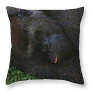 Nap Time For The Monkey Throw Pillow