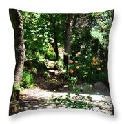 Napa Rose Pathway Throw Pillow