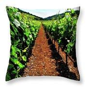 Napa Rows Of Grapes Throw Pillow