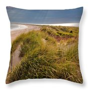 Napatree Point Preserve Throw Pillow by Susan Cole Kelly