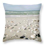 Naples Florida Xv Throw Pillow