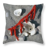 Naples Florida Xvi Throw Pillow
