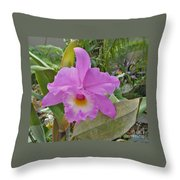 Naples Orchid 3 Throw Pillow