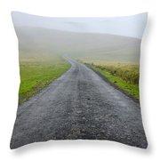 Napoleon Route Throw Pillow