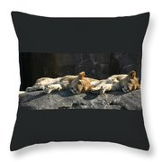Naptime For The Twins Throw Pillow