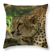 Naptime Is Over Throw Pillow