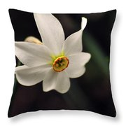 Narciso Throw Pillow