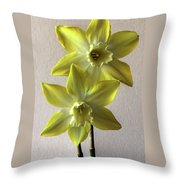 Narcissi Throw Pillow