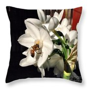 Narcissus And The Bee 1 Throw Pillow by Daniele Smith