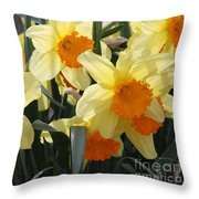 Narcissus Fortissimo Throw Pillow