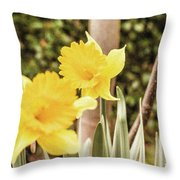Narcissus Of A Plant Throw Pillow