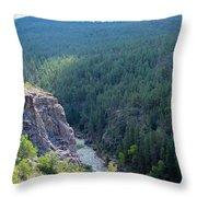Narrow Gauge Railroad Throw Pillow