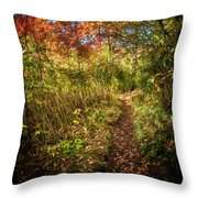 Narrow Is The Path Throw Pillow
