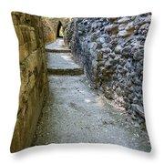 Narrow Mayan Road Throw Pillow