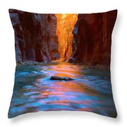 Narrowly Wide Throw Pillow