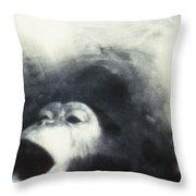 Nasa Chimpanzee, 1961 Throw Pillow