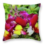 Nascent Blossoms  Throw Pillow