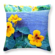Nasturtium Box Throw Pillow