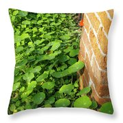 Nasturtium Leaves Throw Pillow