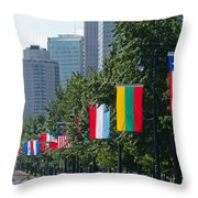 National Flags Of Various Countries Throw Pillow