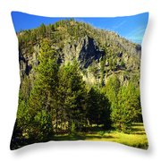 National Park Mountain Throw Pillow