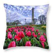 National Park Service Floral Library Throw Pillow