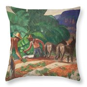 National Park Service - Tropical Country Throw Pillow