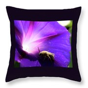 Native Bee On A Purple Flower Throw Pillow