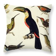 Native Birds, Including The Toucan From The Amazon, Brazil Throw Pillow