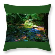 Native Crossing Throw Pillow