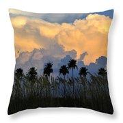 Native Florida Throw Pillow