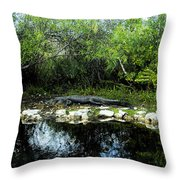 Native Floridian Throw Pillow