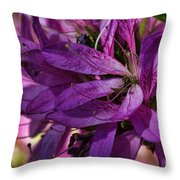 Native Long Petals Throw Pillow