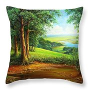 Native Places. Throw Pillow
