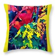 Native Plants Become Art.  Throw Pillow
