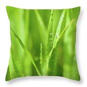 Native Prairie Grasses Throw Pillow by Steve Gadomski