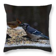 Natures Birds 51 Throw Pillow